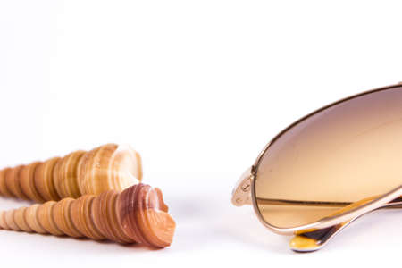 cone shaped: sunglasses and cone shaped bivalves on a white background