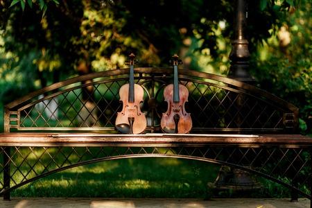 ヴァイオリン オーケストラの楽器。ベンチの上の公園でバイオリン 写真素材