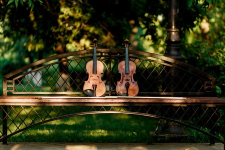 cellos: Violin music instrument of orchestra. Violins in the park on the bench