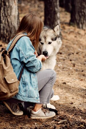 Woman Feeding her Dog. Young Girl with her Dog, Alaskan Malamute, Outdoor at Autumn. Domestic pet. Husky Фото со стока