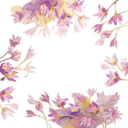 Illustration of watercolor Colchicum, Autumn Crocus, on a white background isolated Stock Photo
