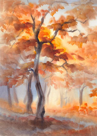 sun rays in the autumn forest watercolor