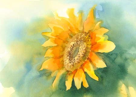 Sonnenblume auf grünem Hintergrund Aquarell Standard-Bild - 68704127
