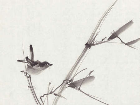 black ink: Bird sumi-e ink painting