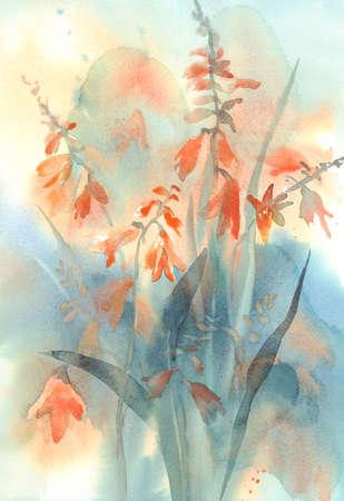 Crocosmia orange flower watercolor Stock fotó