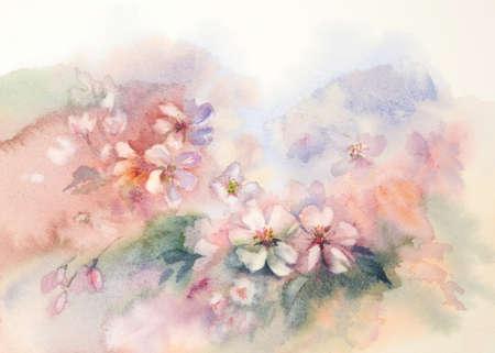 sakura bloom watercolor