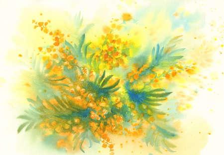 Mimosa flower watercolor