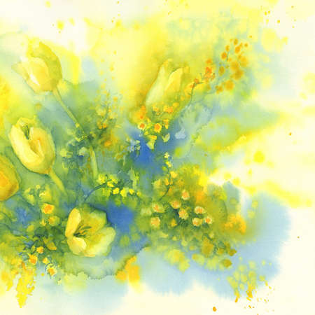 tulips and mimosa flower watercolor Stock Photo