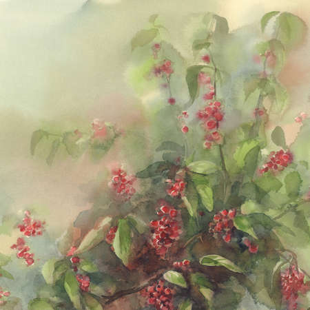 red berries bouquet watercolor background
