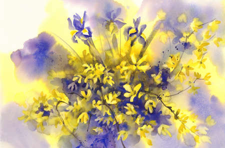 forsythia: forsythia and Iris flowers watercolor background