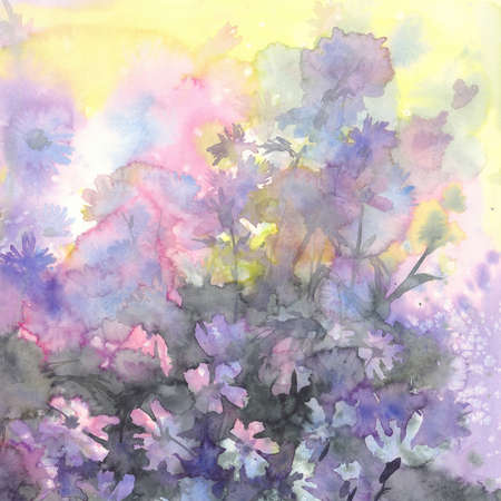 august meadow flowers watercolor background Stock Photo