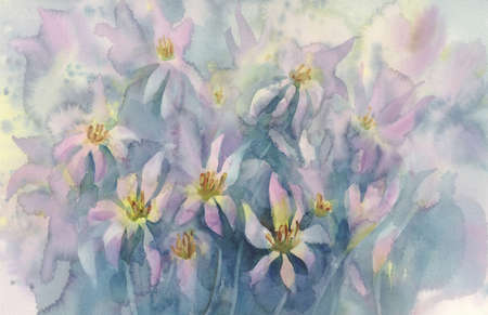 pink colchicum watercolor background