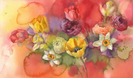 colour tulips bouquet on red background hand made watercolor