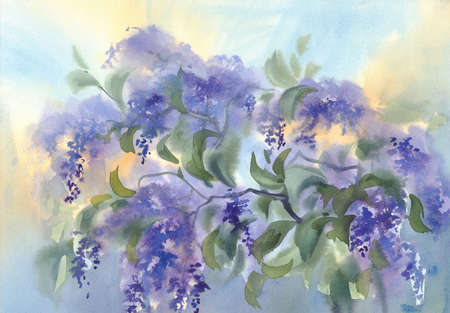 violet lilac flower branches with leaves watercolour background Stock fotó