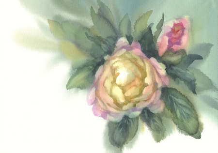 white peony with a bud watercolor background