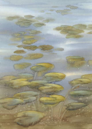 Water lily leaves on the lake watercolor background 스톡 콘텐츠