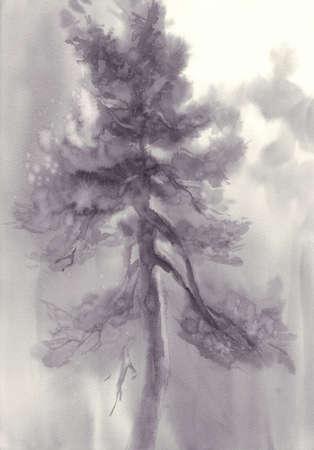 Vintage style monochrome illustration of pine tree