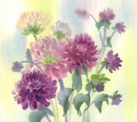 A bouquet of dark violet dahlias watercolor background
