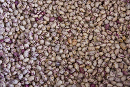 roman beans: dried red kidney beans Stock Photo