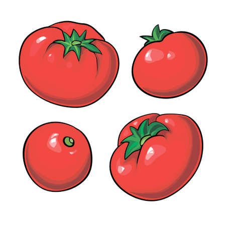 ripe: ripe red tomatoes isolated on a white background