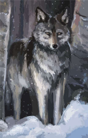 cold pack: Wolf is in the winter forest oil painting