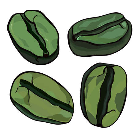 green coffee beans: Green coffee beans on a white background Illustration