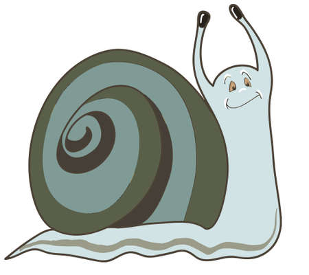 smile close up: Funny snail isilated on white background, vector illustration