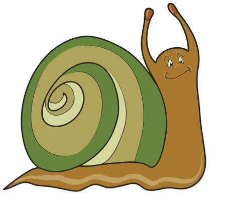 isilated: Funny snail isilated on white background, vector illustration