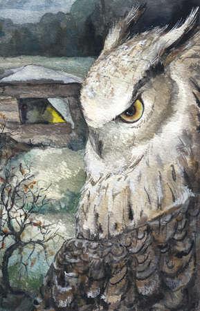 talons: Watercolor Owl Nature Wildlife Hand Drawn Illustration