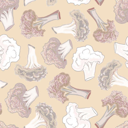 fortified: Seamless pattern cauliflower on a colorful background. Illustration