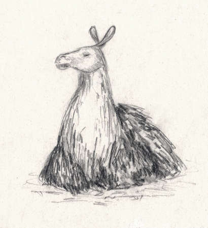 Sketch of a proud lama