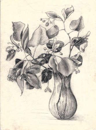 Linden branches in a vase. Sketch