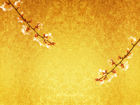 White plum blossoms and the Golden screen