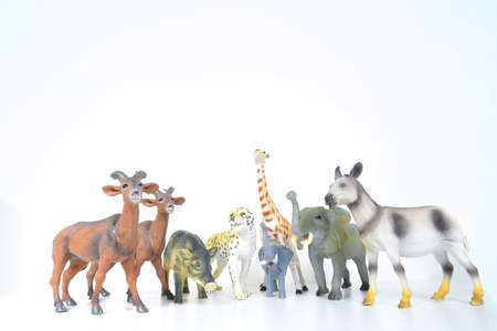 various plastic miniature animals on a white background photo