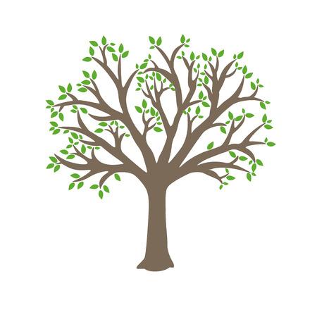 Vector árbol, tronco marrón, hojas verdes