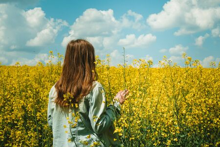 girl in Rapeseed field, Blooming Rapeseed Flowering rapeseed. Against the blue sky with clouds