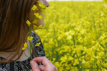 girl holds in her hand a sprig of flowering canola against the background of rapeseed , rapeseed oil Stock Photo