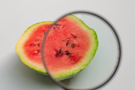 study of a magnifying glass of watermelon   close up