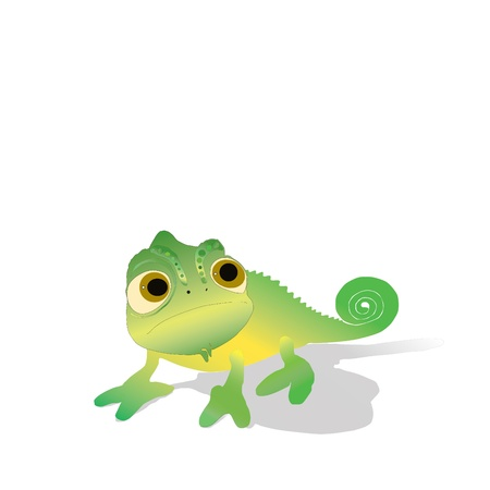 On a white background the chameleon of flavovirent color is located