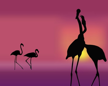 The figure shows a flamingo on a pink background