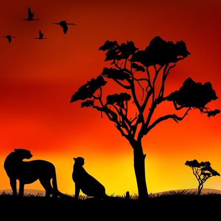De figuur toont de wilde dieren in het wild Stock Illustratie