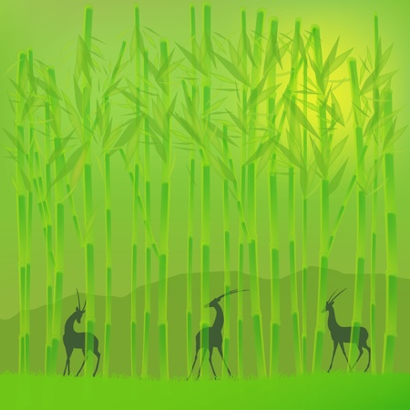 bamboo grove Stock Vector - 12802211