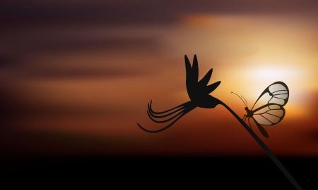 Kleine vlinder op een bloem