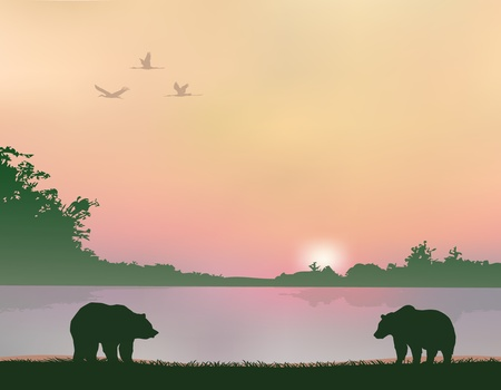 bear silhouette: bears on the shores of lake