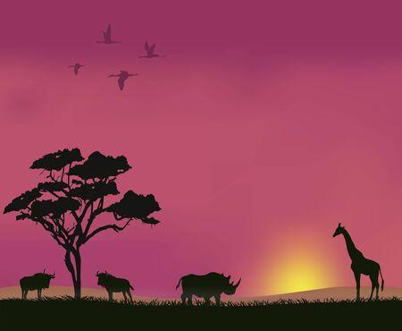 Sunset in the savannah Illustration