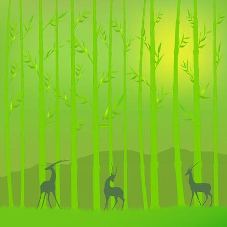 작은 숲: 대나무 숲 일러스트