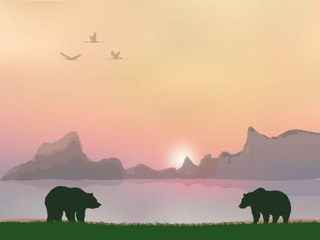 polar light: los osos Vectores