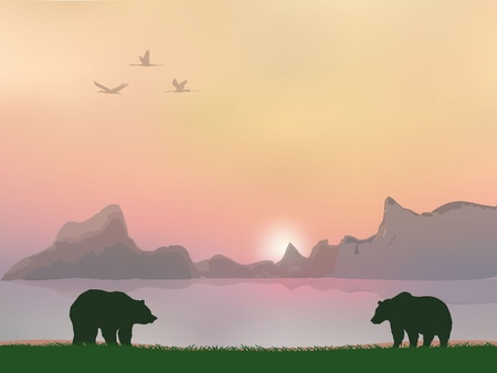 grizzly: ours