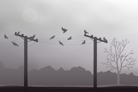The doves on a gray background Stock Vector - 17284483