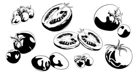 Tomato vector drawing set. Isolated tomato, sliced piece and tomato sauce. Vegetable engraved style illustration. Detailed vegetarian food sketch. Farm market product. Illustration